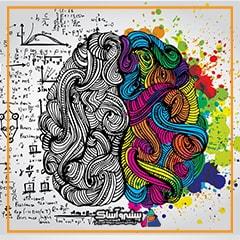 نیمکره چپ و راست مغز