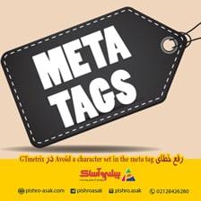 رفع خطای Avoid a character set in the meta tag در GTmetrix